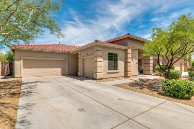 Phoenix Single Family Home For Sale: 27211 N 23rd Lane