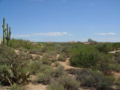 Carefree Residential Lots & Land For Sale: 36448 N Wildflower Road