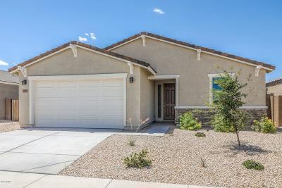 Maricopa Single Family Home For Sale: 40109 W Brandt Drive