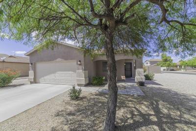 San Tan Valley Single Family Home For Sale: 1260 E Desert Rose Trail