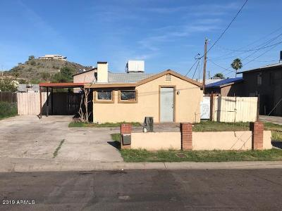 Phoenix Single Family Home For Sale: 9619 N 12th Avenue