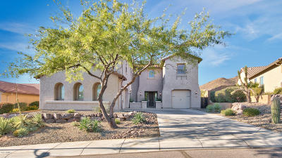 Phoenix Single Family Home For Sale: 1924 W Peak View Road