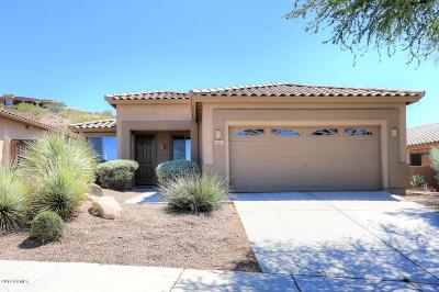 Fountain Hills Single Family Home For Sale: 9807 N Desert Rose Drive