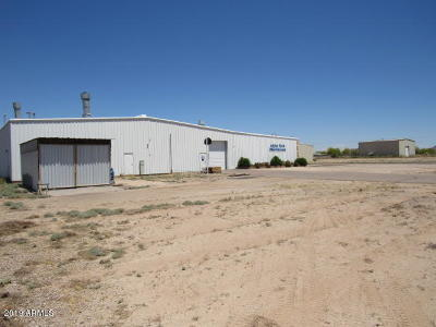 Commercial For Sale: 32240 W Bud Road