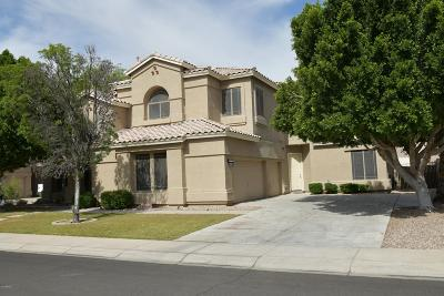 Scottsdale, Paradise Valley, Phoenix, Chandler, Tempe, Gilbert, Mesa Single Family Home For Sale: 1541 S Carriage Lane