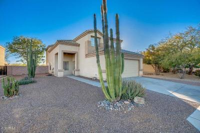 Queen Creek Single Family Home For Sale: 2329 W Tanner Ranch Road