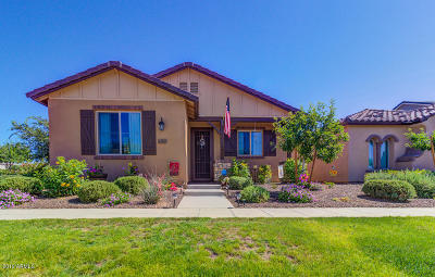 Surprise Single Family Home For Sale: 13330 N 149th Avenue