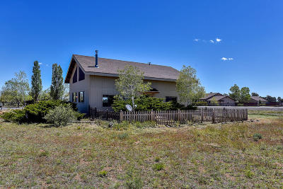 Flagstaff Single Family Home For Sale: 9990 Pinto Drive
