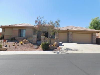 Phoenix Single Family Home For Sale: 2604 W Shinnecock Way