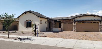 Queen Creek Single Family Home For Sale: 20944 E Watford Drive E