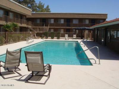 Phoenix Apartment For Sale: 18202 N Cave Creek Road #114