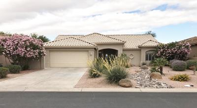 Chandler, Gilbert, Mesa, Queen Creek, San Tan Valley, Sun Lakes, Gold Canyon, Maricopa Single Family Home For Sale: 23712 S Stoney Path Drive