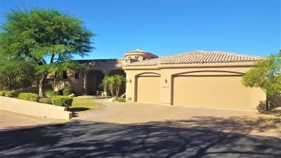 Phoenix Single Family Home For Sale: 14634 S Presario Trail