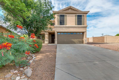 San Tan Valley Single Family Home For Sale: 1072 E Dragon Fly Road