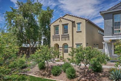 Chandler Single Family Home For Auction: 4591 S Felix Place
