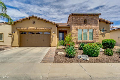 San Tan Valley Single Family Home For Sale: 1574 E Elysian Pass
