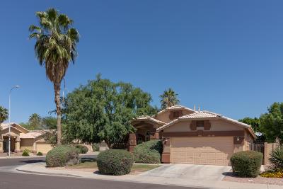 Chandler Single Family Home For Sale: 4960 W Flint Street