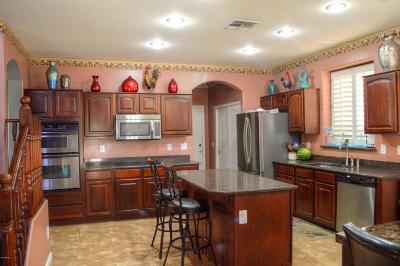 Surprise Single Family Home For Sale: 13616 W Banff Lane