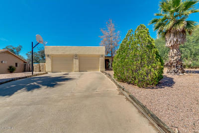 Fountain Hills Single Family Home For Sale: 17405 E Calaveras Avenue