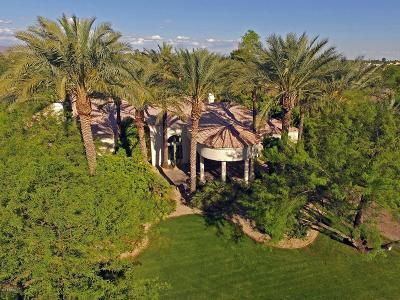 Paradise Valley Single Family Home For Sale: 9141 N 70th Street