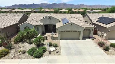 Waddell Single Family Home For Sale: 8410 N 180th Drive