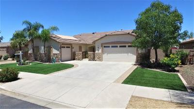 Queen Creek Single Family Home For Sale: 21768 E Escalante Road