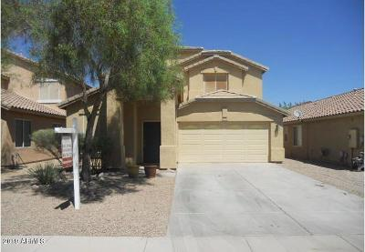 Maricopa Single Family Home For Sale: 44376 W McClelland Drive