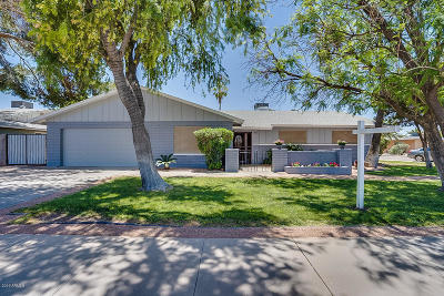 Tempe Single Family Home For Sale: 1817 E Julie Drive