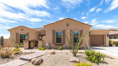 Goodyear, Waddell Single Family Home For Sale: 18105 W Desert Sage Drive