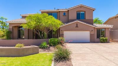 Phoenix Single Family Home For Sale: 6513 W Lucia Drive