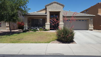 Goodyear Single Family Home For Sale: 16202 W Williams Street