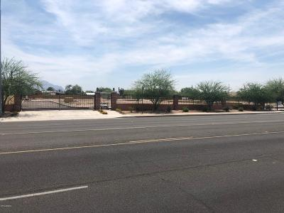 Apache Junction Residential Lots & Land For Sale: 265 N Ironwood Drive