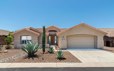 Gold Canyon Single Family Home For Sale: 6578 S Foothills Drive