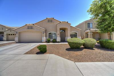 Peoria Single Family Home For Sale: 21263 N 95th Drive
