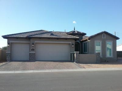 Mesa Single Family Home For Sale: 4466 E Fairbrook Street
