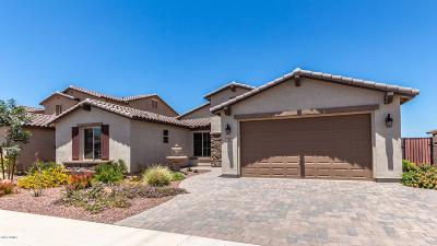 Queen Creek Single Family Home For Sale: 640 W Honey Locust Avenue