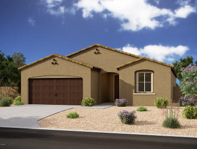 San Tan Valley Single Family Home For Sale: 664 W White Sands Drive
