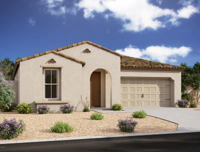 San Tan Valley Single Family Home For Sale: 684 W White Sands Drive