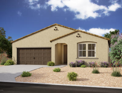 San Tan Valley Single Family Home For Sale: 648 W White Sands Drive
