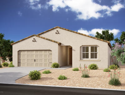 San Tan Valley Single Family Home For Sale: 628 W White Sands Drive