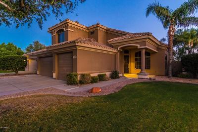 Scottsdale Single Family Home For Sale: 8115 E Michelle Drive