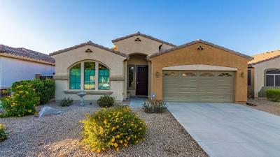 Gold Canyon Single Family Home For Sale: 18446 E Azul Court