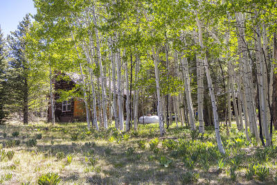 Flagstaff Single Family Home For Sale: 7567 W Forest Service Rd 9004t
