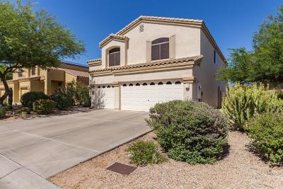 Cave Creek Single Family Home For Sale: 34201 N 43rd Street