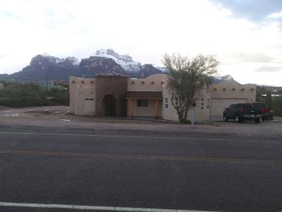 Apache Junction Single Family Home For Sale: 1587 N Starr Road