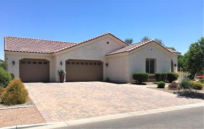 Queen Creek Single Family Home For Sale: 22789 S 220th Street