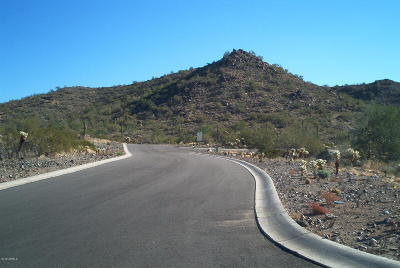Gold Canyon Residential Lots & Land For Sale: S Kings Ranch Road