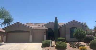Gilbert Single Family Home For Sale: 4241 E Andre Avenue