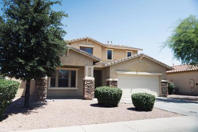 Gilbert Single Family Home For Sale: 3710 E Vallejo Drive