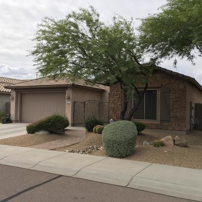Maricopa County, Pinal County Single Family Home For Sale: 9034 W Redbird Road